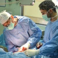 4.3-cirugia caballos (4)