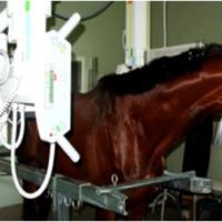 4.5-diagnostico-imagen-1