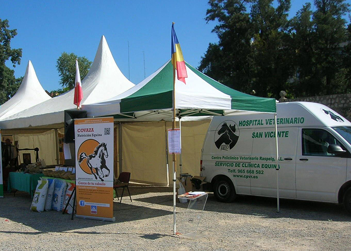 Jumping horses competition vet assistance