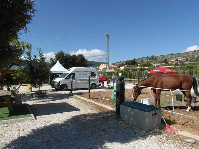 Veterinary assistance equestrian competition
