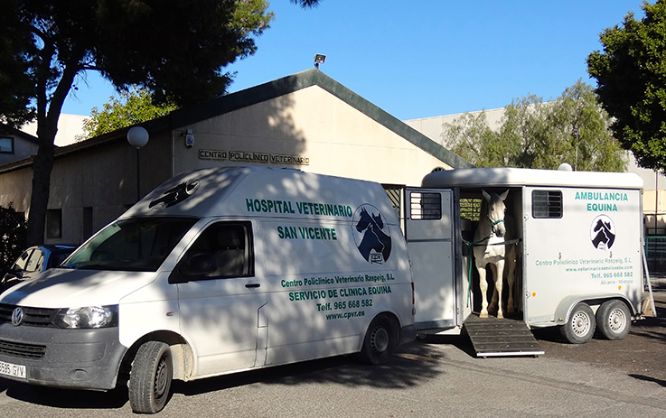 ambulancia caballos 2 hospital veterinario san vicente