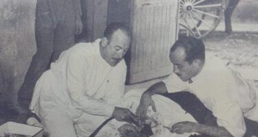 Castración Caballo Manuel Isidro Rodríguez