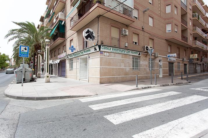 fachada 2 clinica de elche - hospital veterinario san vicente