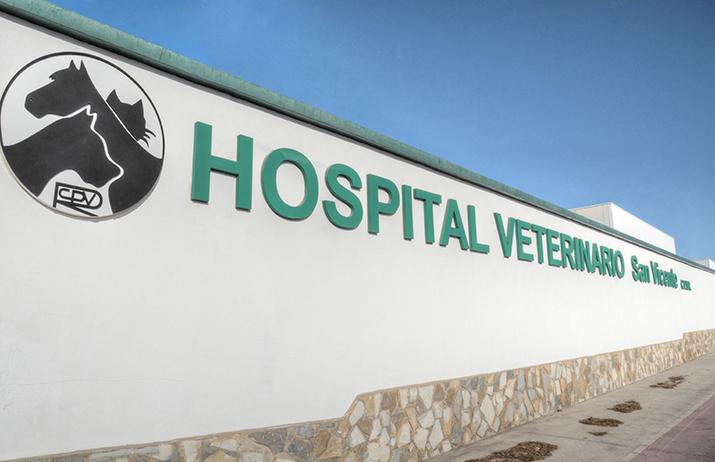 fachada 6 hospital veterinario san vicente