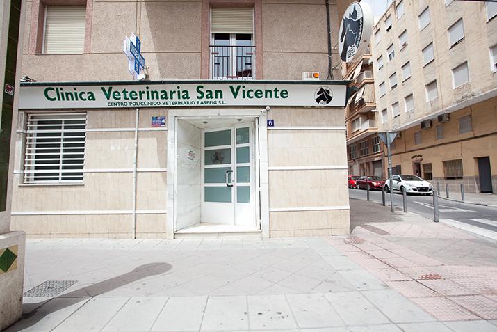 fachada clinica de elche - hospital veterinario san vicente