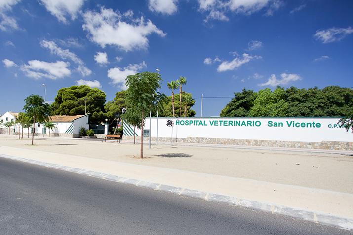 fachada exterior hospital veterinario san vicente