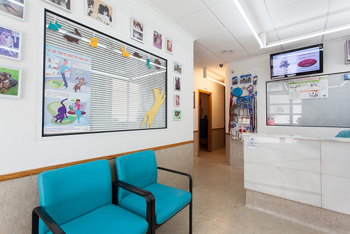 Elche clinic waiting room 2