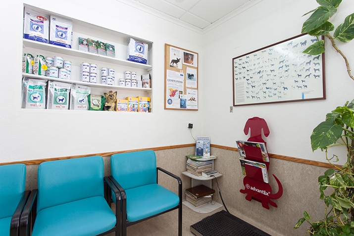 Elche clinic waiting room