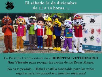 hospital-veterinario-san-vicente-31-diciembre