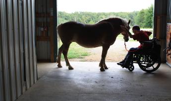 Los beneficios en personas de las terapias con caballos