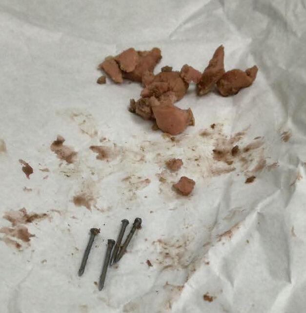 Salchichas con clavos extraidas
