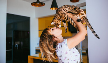 Cat care vary depending on their age