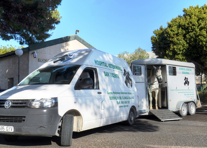 ambulancia caballos hospital veterinario san vicente