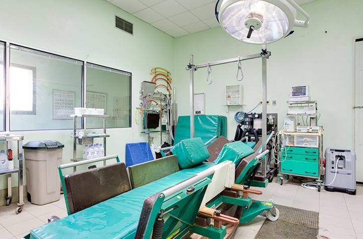 quirofano caballos 3 hospital veterinario san vicente