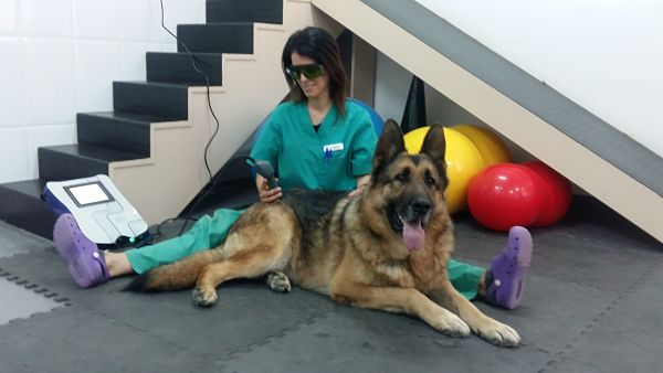 Servicio de rehabilitación y fisioterapia – Láser